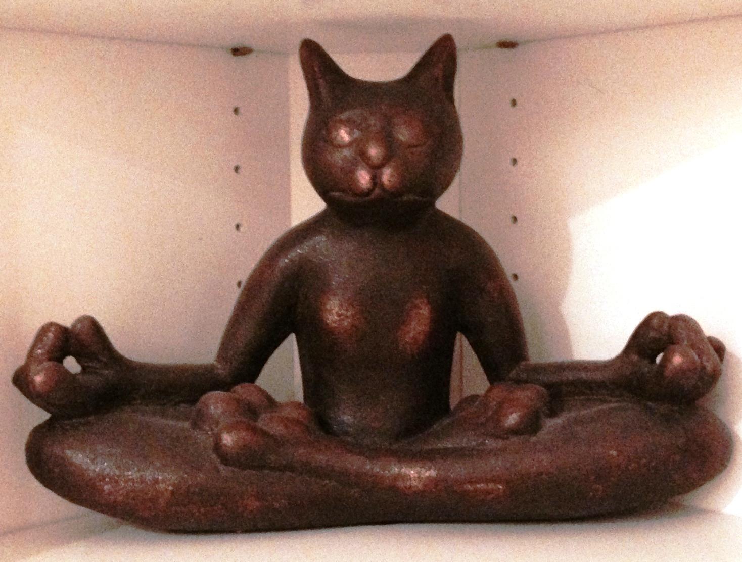 peace out Kat